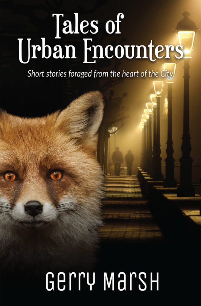 Gerry Marsh book cover - Tales of Urban Encouters - Fox in lamplight - City street at night - lonely couple.